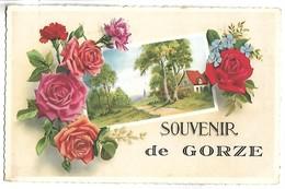 Souvenir De GORZE - Zonder Classificatie