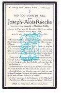 DP Joseph A. Raecke / Dael ° Ieper 1870 † 1924 - Images Religieuses