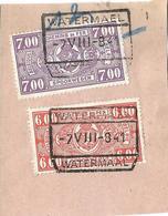 9Fr-987: WATERMAEL // WATERMAAL: 2 Zegels: TR251 + TR252 :  ... Verder Uit Te Zoeken.. - Chemins De Fer