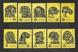 DOGS - Lot Of 10 Matchbox LABELS (see Sales Conditions) S/0130 - Cajas De Cerillas - Etiquetas