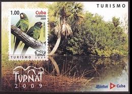 Cuba 2009 Fauna Local Birds Animals Aratinga Euops Parrot Tourism Tree Forest Nature Bird Parrots M/S Stamps MNH - Cuba