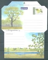 ALAND - 2002 - AEROGRAMME  - PETER BERGSTROM - Lot 20789 - Aland