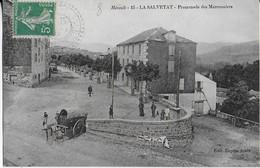 LA SALVETAT :La Promenade Des Marronniers Animée (1915 ) - La Salvetat