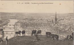 Seine  Maritime :  ROUEN : Vue   ,  Vache - Rouen