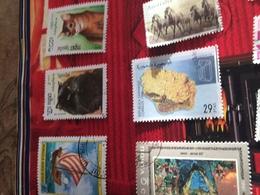 AUSTRALIA I CAVALLI - Altri - Oceania