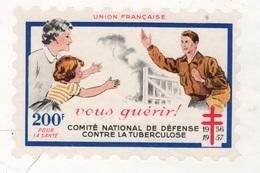 TIMBRE PLASTIQUE 1956-1957 COMITE NATIONAL DE DEFENSE CONTRE LA TUBERCULOSE - 12 X 8 CM - Unclassified