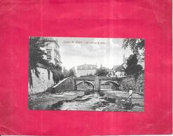SALIES DE BEARN - 64 -  Un Pont Sur Le Saleys - ARD - - Salies De Bearn