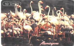 Tanzanie Old Phonecard - 10 Units Flamingo - Tansania