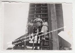 FOTO MOLEN ERTVELDE / 18 JUNI 1944 STAAKMOLEN, 3 MEISJES OP DE WIEKEN VAN DE GILLISMOLEN - Evergem