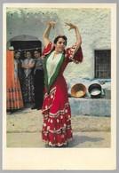 Grotte Des Amaya Dans Le Sacromonte Granada, Danse, Folklore, Habits, - Granada