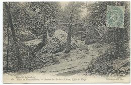 CPA FORET DE FONTAINEBLEAU / SENTIER DES ROCHERS D'AVON EFFET DE NEIGE - Fontainebleau