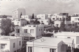 Old Real Original Photo - Tunisia - City View Buildings - Shot 1966 12.2x8.3 Cm - Places
