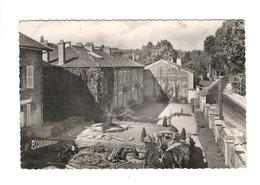 FLAVIGNY Sur Moselle (54) - Préventorium - Pavillons Administratifs - Sonstige Gemeinden