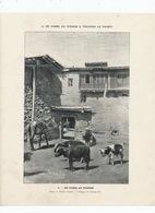 Thibet Habité . Village De Tchou Neu. Leger Pli Coin Gauche En Bas . Light Crease Bottom Left Corner . - Tibet