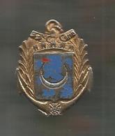 Insigne Drago , 2124 , 33 E Compagnie De Camp , 2 Scans , Frais Fr 2.45 E - Army
