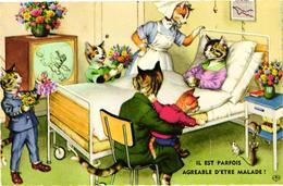 CHATS HUMANISES .. A L'HOPITAL .. IL EST PARFOIS AGREABLE D'ETRE MALADE ! .. INFIRMIERE .. VISITEURS . TELEVISION - Chats