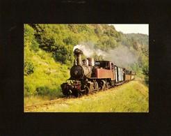 CP . 07 . CHEMIN DE FER DU VIVARAIS . LIGNE TOURNON LAMASTRE . TRAIN A VAPEUR . LOCOMOTIVE - Treni