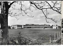 BENEVENT-L'ABBAYE  Stade Et Nouveau Groupe Scolaire. Ed. Théojac 21-12, Cpdm GF - Benevent L'Abbaye