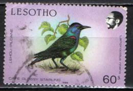 LESOTHO - 1988 - BIRD - USATO - Lesotho (1966-...)
