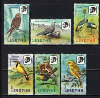 LESOTHO - 1981 - Birds - MNH - Lesotho (1966-...)
