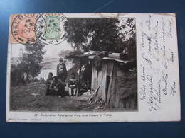 Carte Postale Arborigènes Australiens - Aborigines