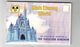 LAKE BUENA VISTA, Florida, USA,Walt Disney World,  Old Souvenir Fold-Out Postcard - Sonstige
