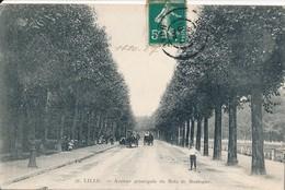 Lille Avenue Principale Du Bois De Boulogne - Lille