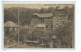 Anseremme Hôtel Britannique ( Voir Au Dos De La Carte Postale ) - Dinant