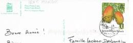 THEME FRUIT : MANGUES / Timbre Iles Vierges Britanniques Date Illisible/ Sur Carte Postale De Punta Cana - Iles Vièrges Britanniques