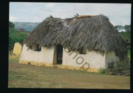 Curaçao - Straw Covered Cottage [AA46-3.939 - Curaçao