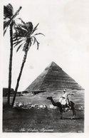 CT-03204- CAIRO - THE CHEFREN PIRAMID   VIAGGIATA 1963 - Cairo