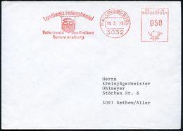 FRÜH- & VORGESCHICHTE / PRÄHISTORIE : 3032 FALLINGBOSTEL/ Landkreis../ Patenkreis D.Kreises/ Rummelsburg 1976 (18.3.) AF - Préhistoire