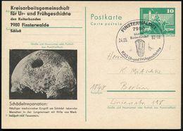 FRÜH- & VORGESCHICHTE / PRÄHISTORIE : 7980 FINSTERWALDE 1/ Meldet/ Bodenfunde!.. 1982 (24.5.) SSt = Faustkeil Auf Amtl.  - Préhistoire