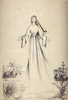 Torino - Vergine - Ed. Suore Missionarie Della Consolata - Formato Grande Viaggiata Mancante Di Affrancatura – E 14 - Vergine Maria E Madonne