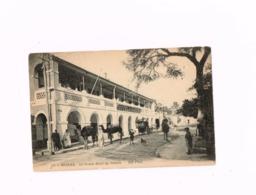Le GRand Hôtel Du Sahara. - Biskra