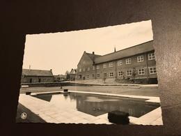 Zonnebeke - Rusthuis Sint-Jozefinstituut - Zonnebeke