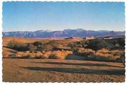 DEATH VALLEY NATIONAL MONUMENT CALIFORNIA - Long Shadows Stretch Across The Sand Dunes ... - Hotels Fred Harvey DV-55 - Death Valley