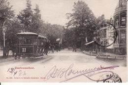 272713Haarlem, Haarlemmerhout Met Tram 11 (poststempel 1903)(links Boven Een Minuscule Vouw) - Haarlem