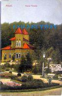PITESTI 1910, Parcul TRIVALEA, Excellent Condition, Unused - Romania
