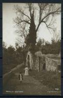 Italia Regno 1909 Sass. Z145 Cartolina 100% Rapallo- Dintorni- Viaggiata - 1900-44 Vittorio Emanuele III