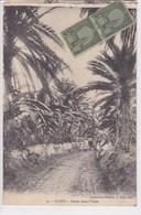 TUNISIE GABES Route Dans L'oasis ,timbre Poste Tunisie , DECHIRURE HAUT GAUCHE ,VOIR SCAN - Tunisie