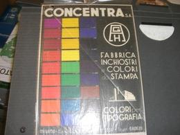 TARGA PUBBLICITARIA IN CARTONE FABBRICA COLORI CONCENTRA MILANO - Plaques En Carton
