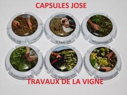 Série De 6 Capsules De Champagne  - GENERIQUE (Travaux De La Vigne) - Collections