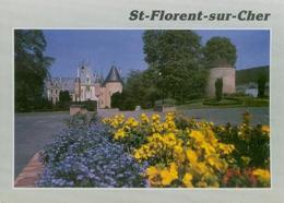 Chateau - Saint-Florent-sur-Cher