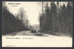 +++ CPA - Environs De Mons - Le Bois D' HAVRE - Publicité Biscuits Parein - Série 25 N° 45 // - Mons
