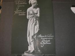 TARGA IN CARTONE PUBBLICITARIA1934 DITTA V.VALOMBRA GENOVA - Plaques En Carton