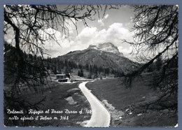 °°° Cartolina - Dolomiti Rifugio Al Passo Duran Nello Sfondo Il Pelmo Viaggiata °°° - Belluno
