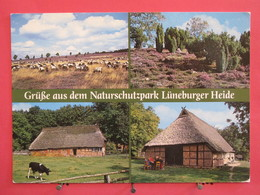 Visuel Très Peu Courant - Allemagne - Grusse Aus Dem Naturschutzpark Lüneburger Heide - Scans Recto Verso - Lüneburger Heide