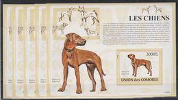 V324. 5x Comores - MNH - Animals - Dogs - 2009 - Bl. - Francobolli