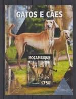 M326. Mozambique - MNH - 2016 - Nature - Animals - Pets - Dogs - Bl - Pflanzen Und Botanik
